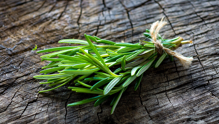 Rosemary Will Naturally Repel Mosquitoes.
